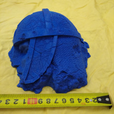 Picture of print of Fallen Norse Statue Ruins Head (pre-supported)