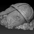 Fallen Norse Statue Ruins Head (pre-supported) image