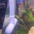 Aquarium Sponge Filter image
