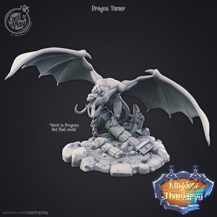 Dragon Tamer (v.0.0)'s Cover