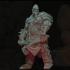 Barbarian Champion image