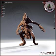 Troll Enforcer 02