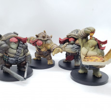 Picture of print of Teenage Mutant Ninja Tortle miniatures bundle - pre-supported