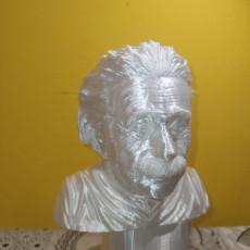 Picture of print of Albert Einstein Support Free