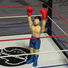 Boxer Zach