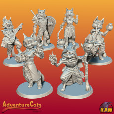 Adventure Cats!