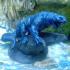 BLUE SPOTTED FROST SALAMANDER image