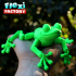 Cute Flexi Print-in-Place Frog image