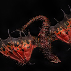 Picture of print of Adult Red Dragon
