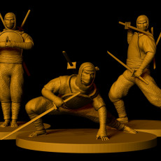 Shinobi Warriors (3 poses)