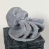 Hermit Crab in Skull image