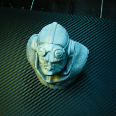 Picture of print of Kuiil Bust - The Mandalorian