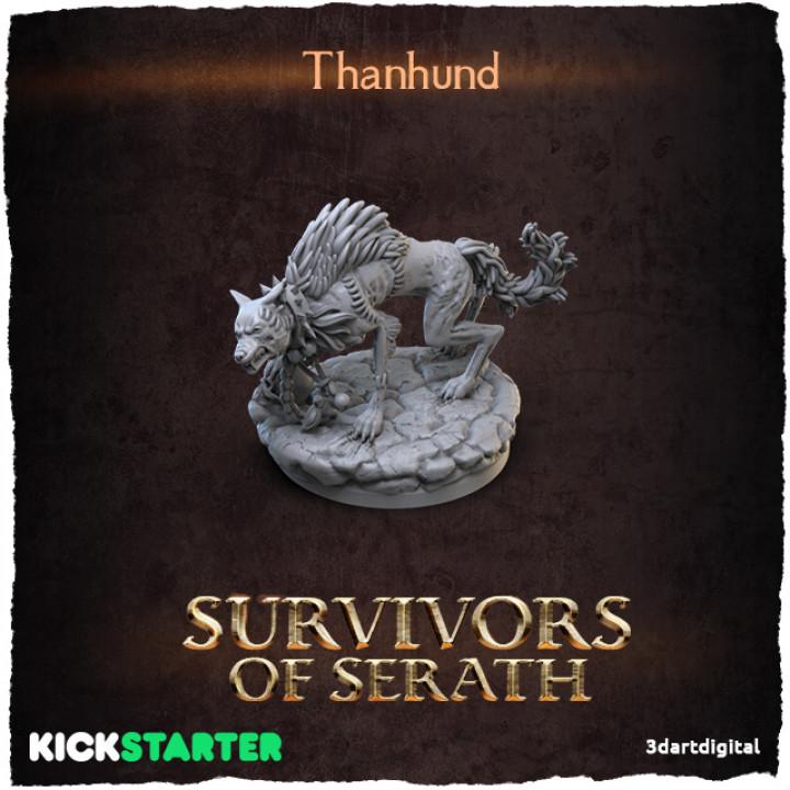 Thanhund's Cover