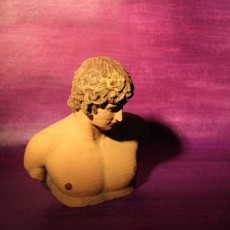 Picture of print of Portrait of Antinous