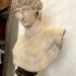 Portrait of Antinous image