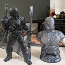 Picture of print of The Mandalorian Support Free Remix Pose 3/5