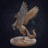 Pegasus image