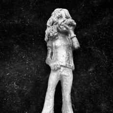 Robert Plant - A pop Culture Inspired Big Head Figure Inspired  big head  Figure