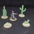 Cactus Plants image