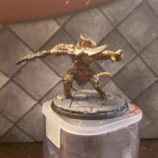 Picture of print of Dragonborn Paladin - Professionally pre-supported!