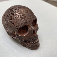 Picture of print of Filigree Anatomical Skull - Pre-supported STL