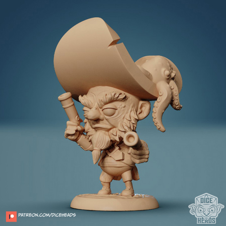 Dwarf Pirate 24mm PRE-SUPPORTED's Cover