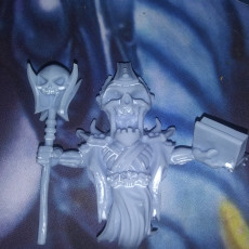 Lich 24mm PRE-SUPPORTED
