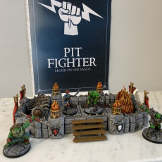 Picture of print of Pit Fighter Arenas - Professionally pre-supported!