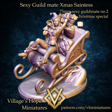 75mm sexy guild mate collection