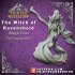 Witch of Ravenshold - Evil Magic User - Pre-Support - 32mm scale - D&D image