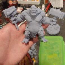 Picture of print of 3x Cave Trolls - Pre-Supported