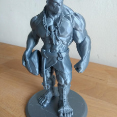 Picture of print of Stone Giant - Tabletop MIniature