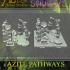 Swamp of Sorrows - Azite Pathways image