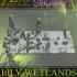 Swamp of Sorrows - Lily Wetlands image