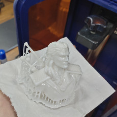 Picture of print of Geralt of Rivia / the Witcher bust / Henry Cavill