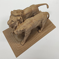 Picture of print of Lion and lionesse