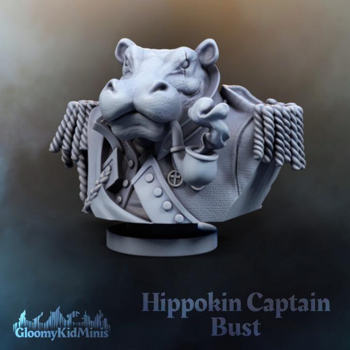 Hippokin Captain Bust