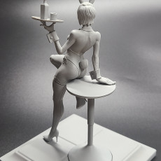 Picture of print of 18K Anatomy - Bunny Girl