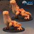 Desert Lizard Set / Sand Reptile Collection image