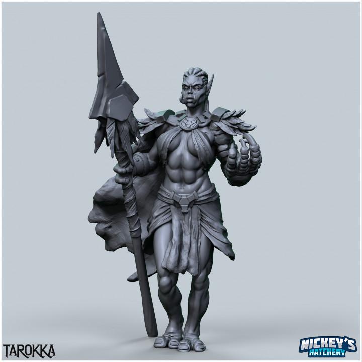 Tarokka, Troll Druid's Cover