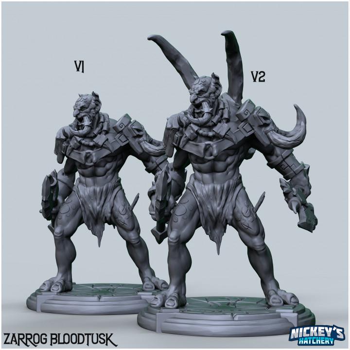 Zarrog Bloodtusk, Troll Warrior's Cover