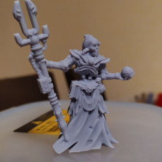 Picture of print of Cyborg lich