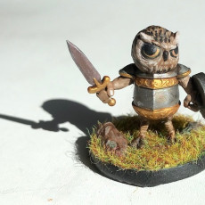 Picture of print of Owl Fighter (pre-supported included) FREE MODEL