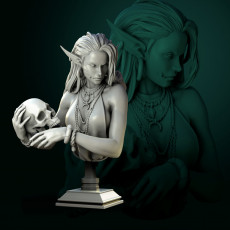 Laedria the Necromancer bust pre-supported