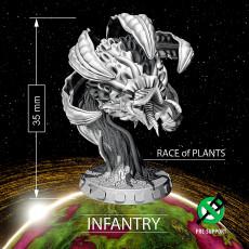 Race of PLANTS