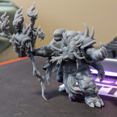 Picture of print of Hungor the Rot Sorcerer- Dark Gods