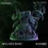 Hungor the Rot Sorcerer- Dark Gods image