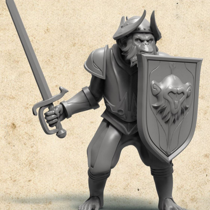 Monkeystador infantry sword and shield's Cover