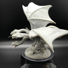 Picture of print of Draco Hydra