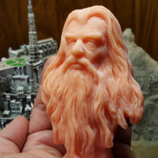 Picture of print of Sylvester McCoy - Radagast The Brown - A Lord of the Rings Inspired head bust/wall hanging